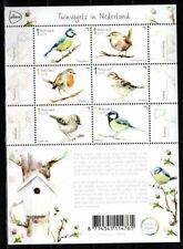 Nederland NVPH 3743-48 Vel Tuinvogels in Nederland 2019 Postfris