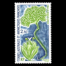 TAAF 1993 - Plants of the Antarctic Nature - Sc 185 MNH