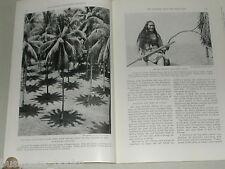 1937 magazine article, the Pilgrim sails around the world, 85ft schooner