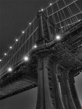 CULTURAL LANDSCAPE BRIDGE MANHATTAN LIGHT POSTER ART PRINT HOME PICTURE BB748A