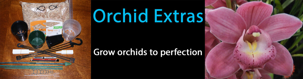 Orchid Extras