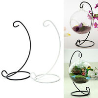 Hanging Glass Vase Flower Iron Stand Home Terrarium Planter Clear Plant DJCA WNF