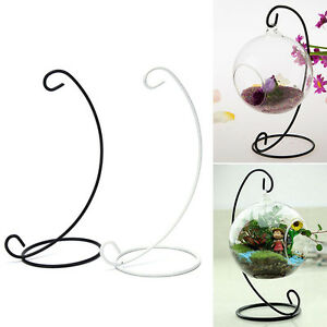 Hanging Glass Vase Flower Iron Stand Home Terrarium Planter Clear Pla_da