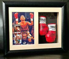 More details for prince naseem hamed miniature boxing gloves display *boxing memorabilia*