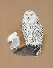 Snowy White Owl Painting Handmade Indian Bird Miniature Decor Nature Ethnic Art