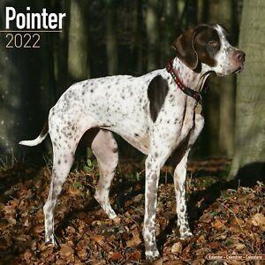 Pointer Dog - 2022 Square Wall Calendar