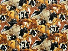 In the Country Cows Multi Breeds fabric fq 50 x 56 cm 100% Cotton Nutex 89310-6