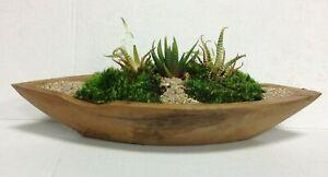 Pottery Barn PB Teak Wood Basin Fresh Garden Planter Succulent Bowl 15x5x5 large