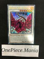 Yu-gi-oh! Dragon Rose Noire DUDE-FR010 1st