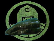 25+ Poblano Ancho Pepper Seeds (Huge and Giant) (organic chili, chile) Pasilla