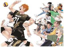 Pre-Ordar  Haikyuu The Latest Comic Book Vol. 45 Japanese From JAPAN