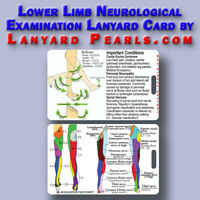 Lower Limb Dermatome + Myotome PVC Lanyard Card - Medical Neuro Exam