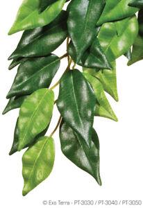 Exo Terra Jungle Plants Ficus Large