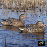 AVERY GREENHEAD GEAR GHG PRO GRADE EARLY SEASON MALLARD HEN DECOY PACK 6