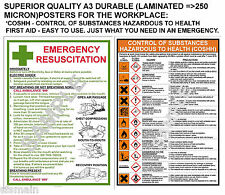 COSHH + FIRST AID 2 QUALITY A3 LAMINATED POSTERS LOWEST PRICE ON EBAY