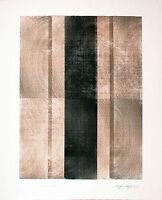 Siegfried Assfalg 1925-2012: Farbholzdruck 1990 84 x 69 cm Holz Maserung Konkret