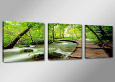 Cuadros en Lienzo ´ 150 x 50 cm Nr. 4216 naturaleza