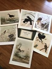 Set Vintage Art Prints AUSTRALIAN BIRD DRAWINGS Neville Cayley, Folio of 6, 1969