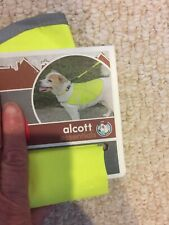 Alcott Essentials Visibility Dog Vest,  Neon Yellow Reflective - Large
