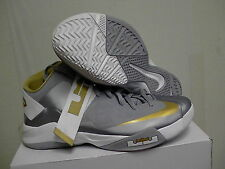 Nike Zoom Lebron James Soldier VI TB Gr 11.5 grau, gold
