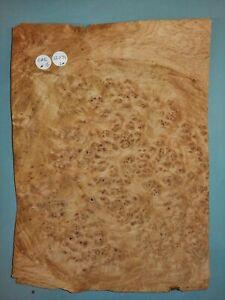 CONSECUTIVE SHEETS OF BURR OAK VENEER 22 X 31 CM OAK# 16 MARQUETRY