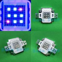 5x10W Square Cool White 10000K+Royal Blue 450nm-455nm High Power LED Light Bulb