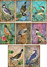Vintage inspired birds small note cards tags ATC altered art set of 8