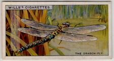 Dragonflies Do Not Bite Or Sting Are Harmless Insects 80+ Y/O Ad Trade Card