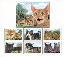 CON9903 Cats 6 stamps and block