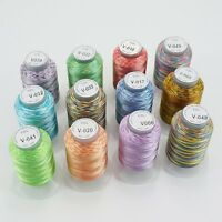 New brothread 12 Colours Variegated Polyester Embroidery Machine Thread Kit 500M