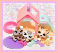 ❤️Authentic BABY Littlest Pet Shop LPS 1876 1877 1878 PETRIPLETS Puppy Dog❤️