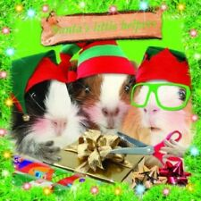 Santa's Little Helpers Guinea Pig 10 pk Small Square Xmas Cards CLEARANCE SALE