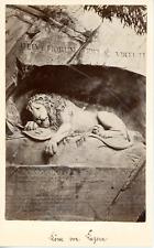 Suisse, Lion de Lucerne Vintage albumen print Tirage albuminé  10X15  Circ