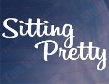 SITTING PRETTY Novelty Lowered/Slammed Car/Van/Window/Bumper Vinyl Sticker/Decal