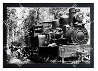 HISTORIC MILTON CREEK LOGGING Co. St HELENS, OREGON TRAIN POSTCARD #3