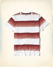 HOLLISTER Must-Have Collection T-Shirt Med / Large Avlbl *Brand New w/ Tags* Tee
