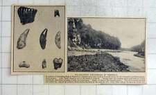 1925 Paleolítico descubrimientos en Creswell Barranco, dientes humanos, mamut, Wolf