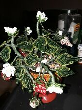 French Beaded Strawberry Plant