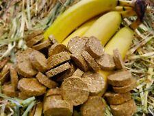 Banana & Oaten Hay Cookie Treats for Pet Bunny Rabbit