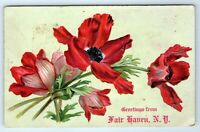 Vintage Postcard Greetings From Fair Haven New York NY Red Poppy Flower Embossed