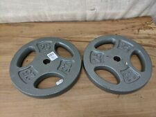"""x2 25 Lb Cap 1"""" Hole Iron Grip Weight Plates Pair Set of Two - 50 Lbs. Total"""