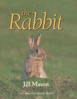 The Rabbit: 2015 by Jill Mason (Hardback, 2015)