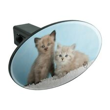 Ragdoll and Tiffa