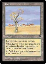 KAROO Visions MTG Land Unc