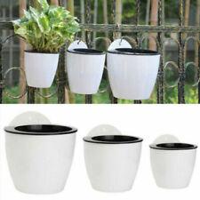 Pots blancs pour plante