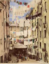 Photo Alfredo Noack Albuminé Réhaussé Gênes Genova Italia Vers 1880