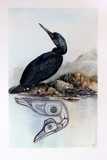 Sue Coleman Hand Signed Numbered Limited Edition Cormorant 1980's