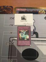 Carte Yu-Gi-Oh! RP02-FR045 Tableau de la Destinée (Super Rare)