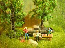 H0 Diorama HO 1:87 Apfelernte mit Verkaufsstand Gehöft Wiese Wiking EINZELSTÜCK