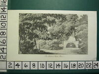 C1830 Antico Stampa ~ The Tomb Presso Park Place